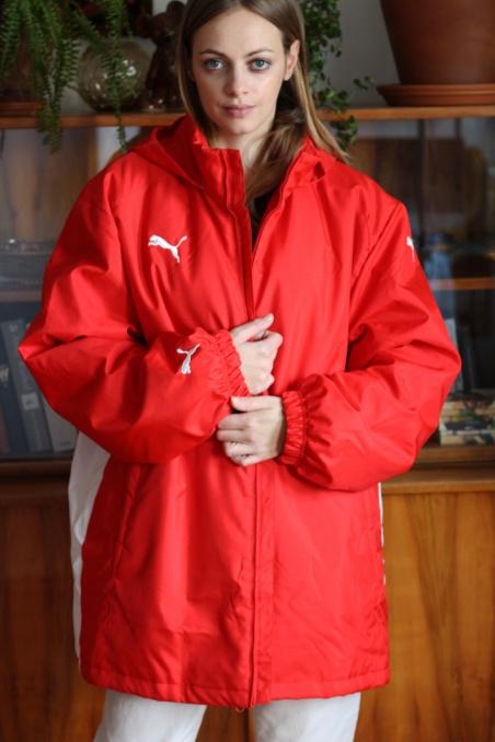 Vintage warm winter red...